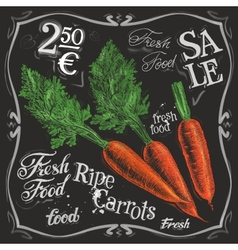 Ripe carrots logo design template fresh vector