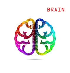 Colorful brain symbol vector