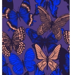 dark colorful background with butterflies vector image