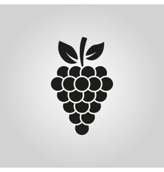 The grapes icon grape symbol ui web logo sign vector