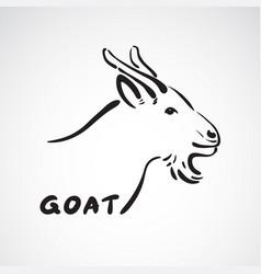 goat head on white background farm animals vector image