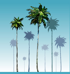 Painted tall coconut palm trees on blue sky vector