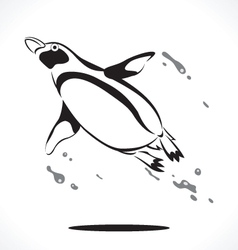 penguin 4 vector image