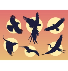 Bird in flight silhouette vector image vector image
