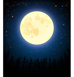 Full moon shines on a pine forest vector