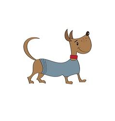 Puppy dressed in fancy winter jacket vector