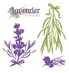 Set of silhouettes of lavender flowers vector