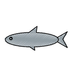 Fish sea animal vector