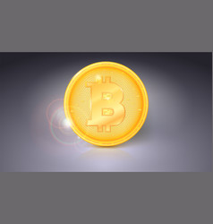 One coin of bitcoin golden symbol of the digital vector