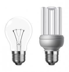 eco light bulbs vector image