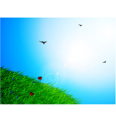 Spring sunny sky and grass background vector