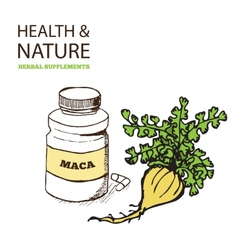 Health and nature supplements collection vector