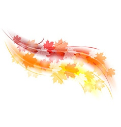 Red and orange autumn shape vector