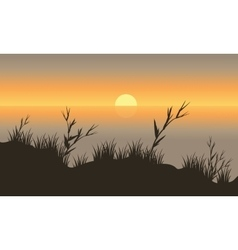 Silhouette beautiful scenery grass vector
