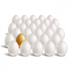 Gold eggs vector