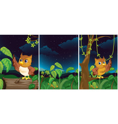 forest scenes with cute owls vector image vector image