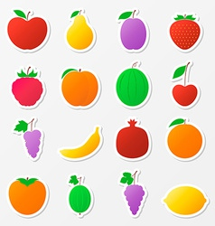 Set of fruit stickers vector image