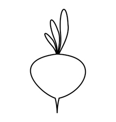 Turnip icon outline style vector