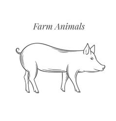Hand drawn pig icon vector image