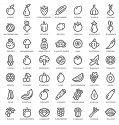 Fruits vegetables outline vector