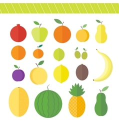 Flat elements for web design fruits and berries vector image