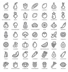 Fruits Vegetables outline vector image