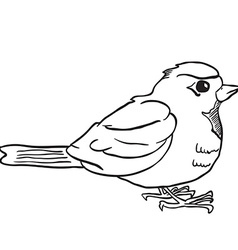 Simple black and white robin vector