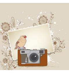 vintage camera bird vector image vector image
