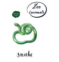 Green coiled snake vector