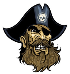 Pirate head vector