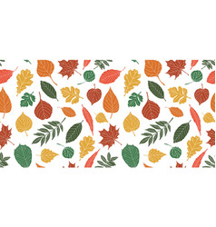 seamless pattern with leafautumn leaf background vector image