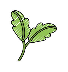 Leaves nature ecology vector