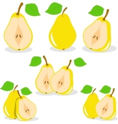 Pear  yellow pears vector