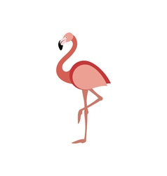 Flamingo-380x400 vector image