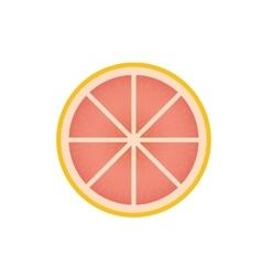 Delicious grapefruit fruit vector