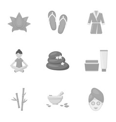 spa set icons in monochrome style big collection vector image vector image