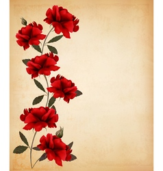 Red roses on old paper background vector