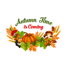 autumn time poster of fall harvest vector image vector image