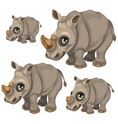 Cute rhino with green eyes animals vector