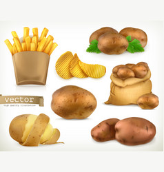 Potato and fry chips vegetable 3d icon set vector