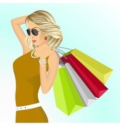 young elegant woman with shopping bags vector image vector image