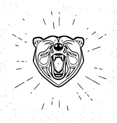 Vintage screaming bear vector