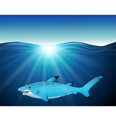 Cartoon shark on the sea vector