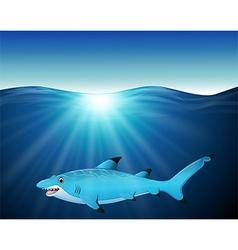 cartoon shark on the sea vector image