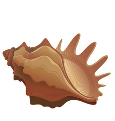 Colorful cute seashell vector