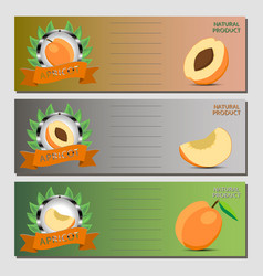 for ripe fruit yellow apricot vector image
