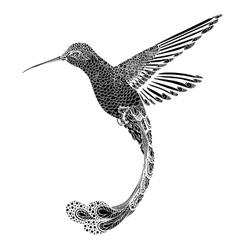 Hummingbird zentangle style vector