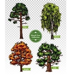Color sketch tree set vector