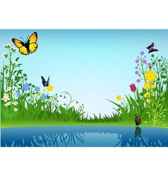 Small Lake and Butterflies vector image