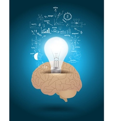 Light bulb with brain drawing business strategy vector image